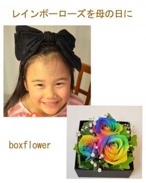 boxflower-rainbowrose3000efbc86e382abe383aae383b31