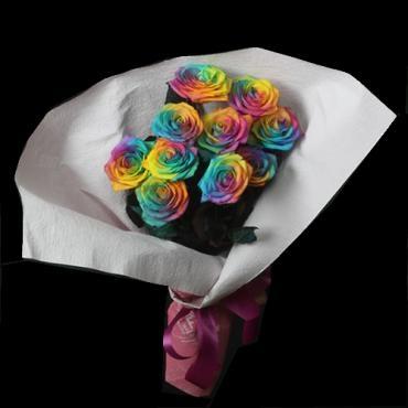 rainbow_rose-b1