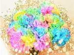 rainbow-carna10308232
