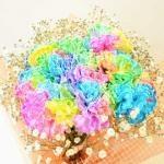 rainbow-carna103603601